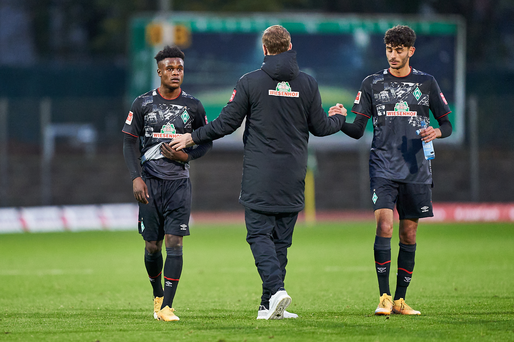 Werder Pauli